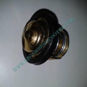 https://www.recambiosscooter.com/417-thickbox/termostato-moto-scooter-250-300-cc.jpg