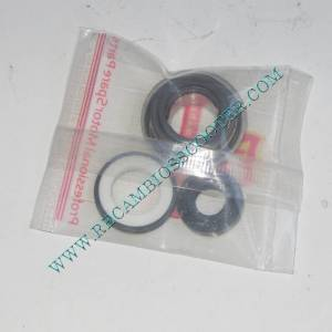 http://www.recambiosscooter.com/853-thickbox/kit-reparacion-bomba-agua-yamaha-majesty-250.jpg